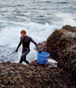 IF KELP IS THE NEW KALE, THEN MAINE IS THE NEW CALIFORNIA